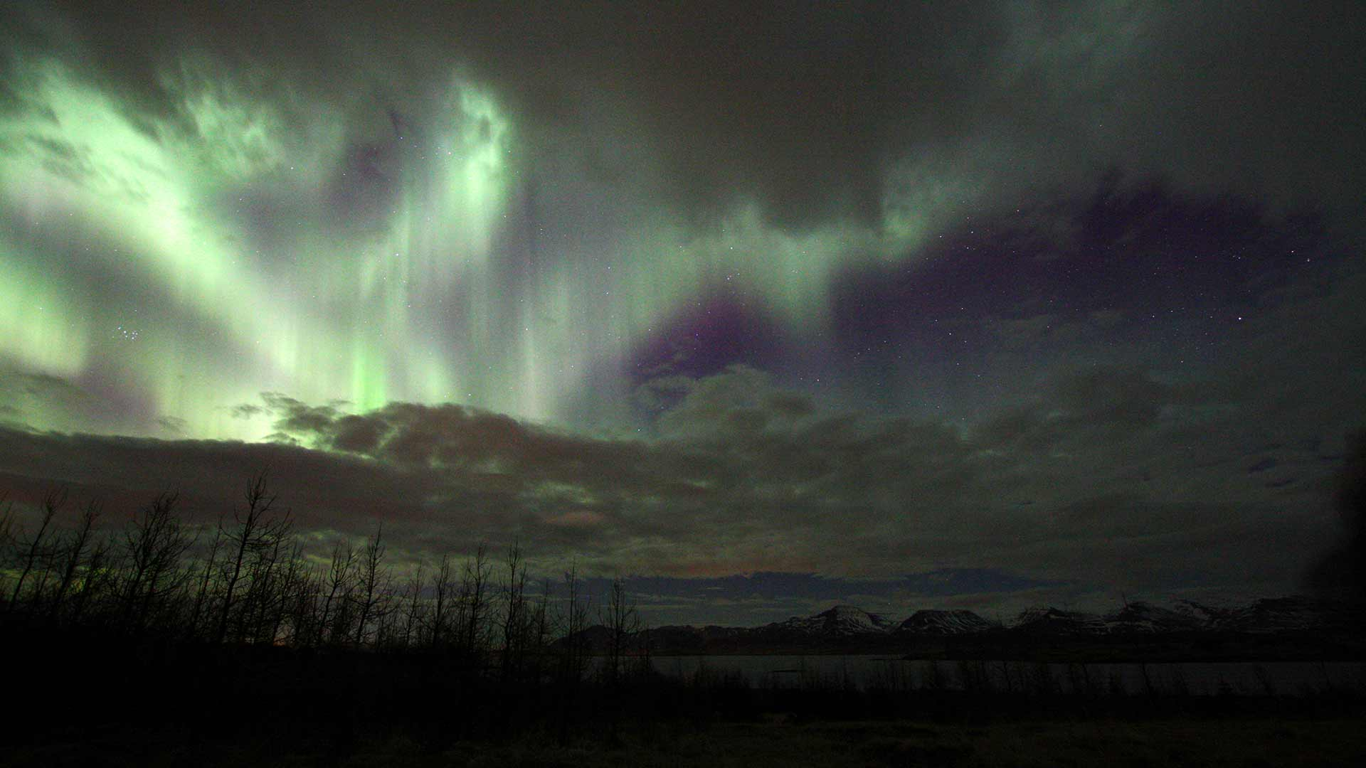 Aurora Forecast in Iceland Tonight